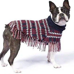 Hundemode aus Alpacawolle
